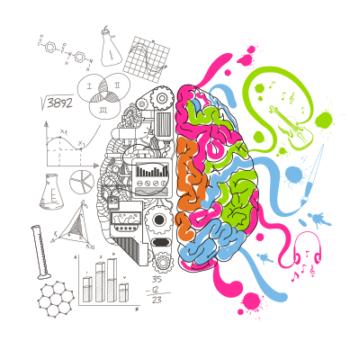 O mito da criatividade e o lado direito do cérebro